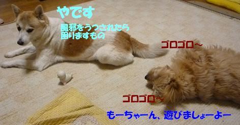 a0154801_20412310.jpg