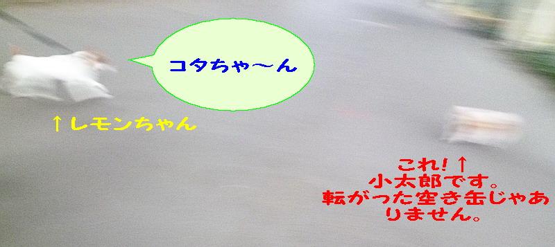 c0138198_9321179.jpg