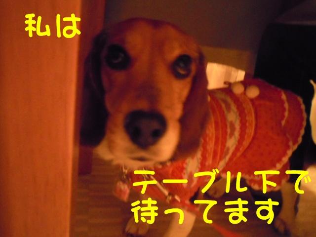 c0166622_1618269.jpg