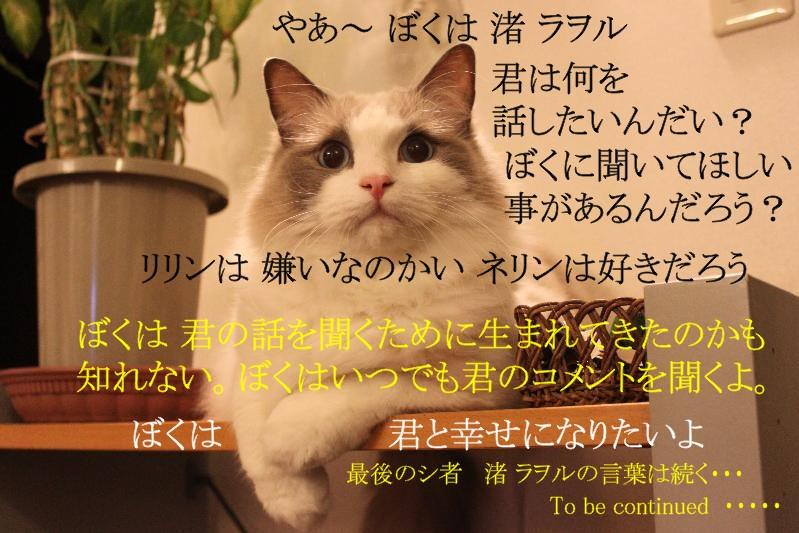 e0214720_1418578.jpg