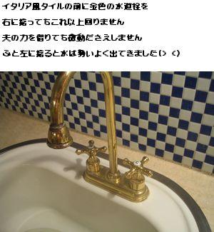 a0045932_18153337.jpg