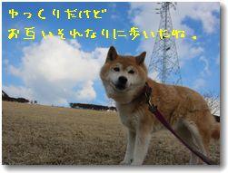 c0006757_20152967.jpg
