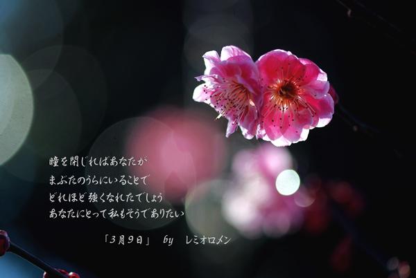 c0091505_14405691.jpg