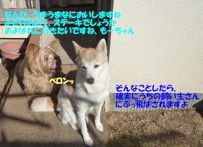 a0154801_17471394.jpg
