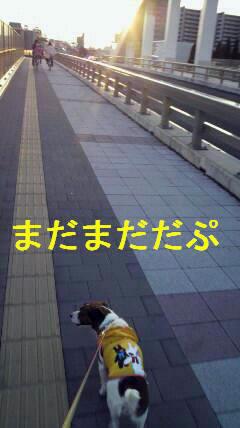 e0121589_2225145.jpg