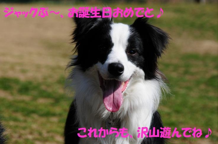 c0147241_21512410.jpg