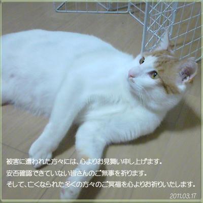 c0018279_2001315.jpg