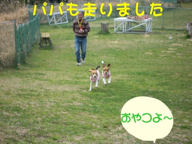 c0166622_10351229.jpg