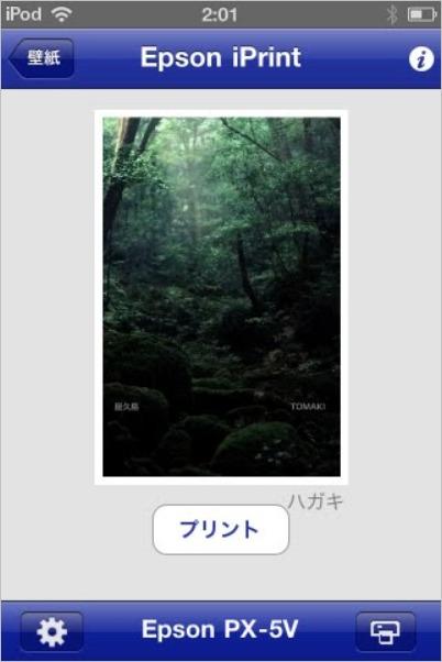 c0060143_263636.jpg