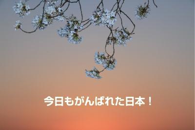a0151007_18174562.jpg