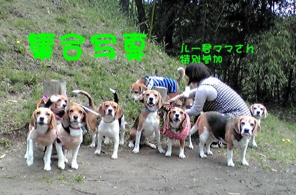 c0166622_10351646.jpg