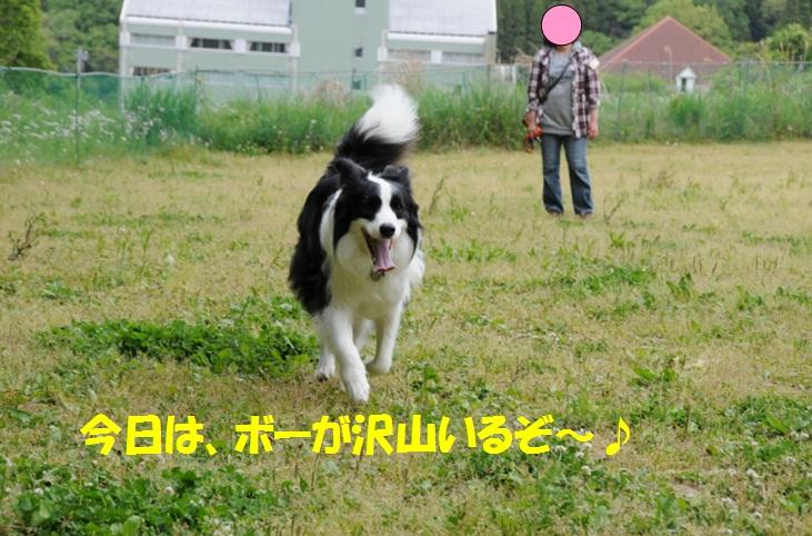 c0147241_22371663.jpg