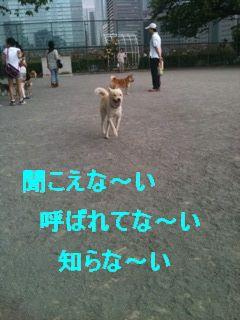 c0191415_12571212.jpg