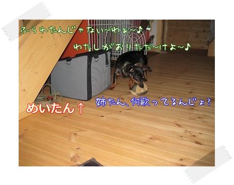 a0091865_15303787.jpg