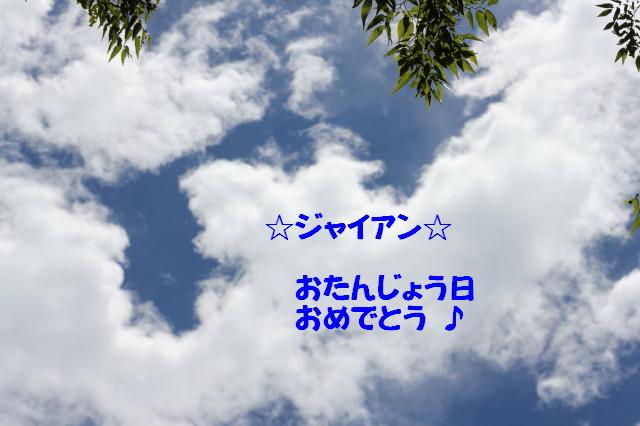 c0145304_12432612.jpg