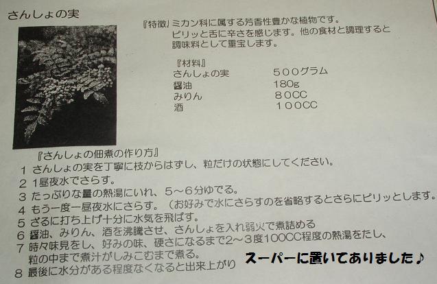 c0098501_1720591.jpg