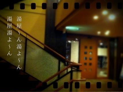 c0004211_157893.jpg