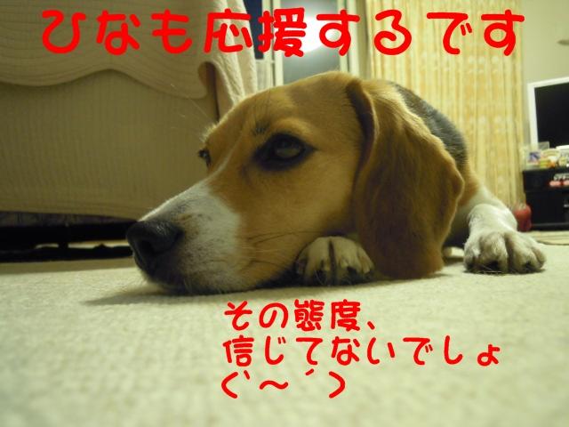 c0166622_11371288.jpg