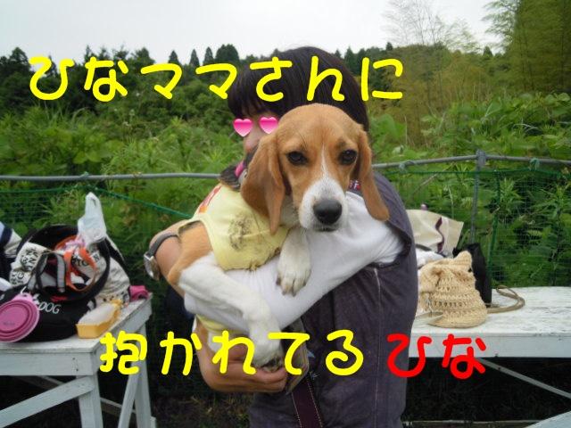 c0166622_12584284.jpg