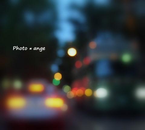 a0212365_18594578.jpg