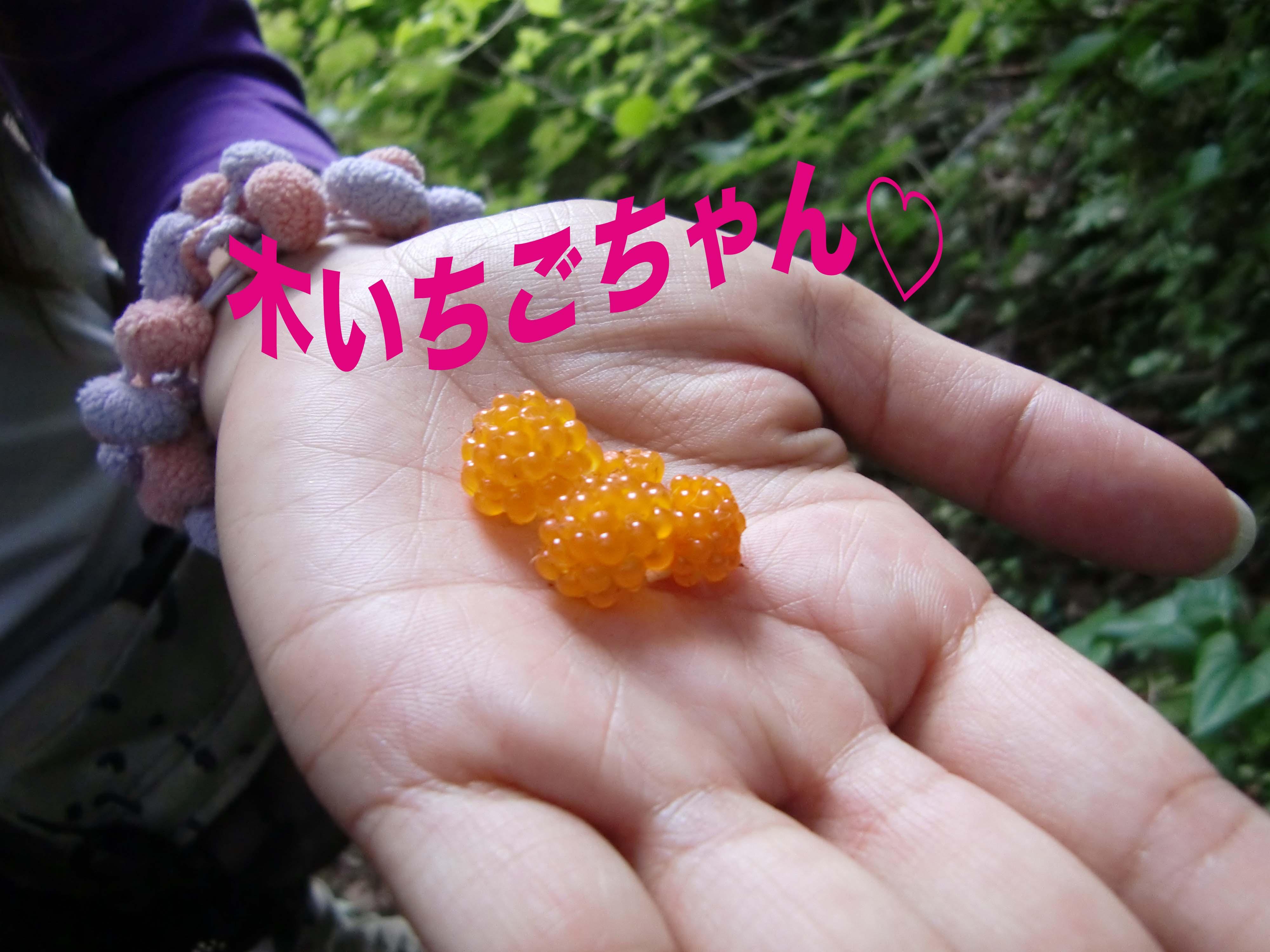 a0109467_0425916.jpg