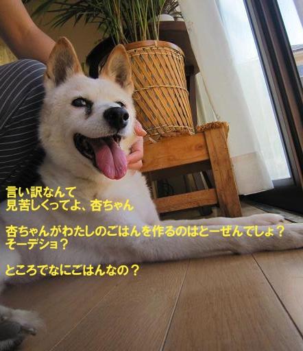 c0000189_15145969.jpg