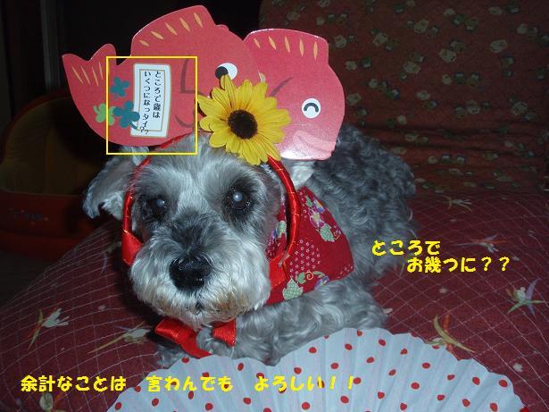 c0098501_2124381.jpg