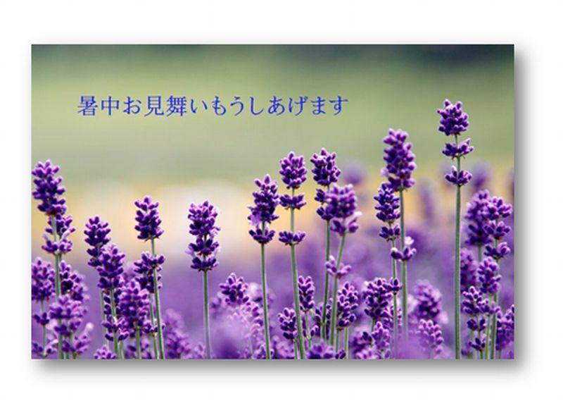c0073016_11275141.jpg