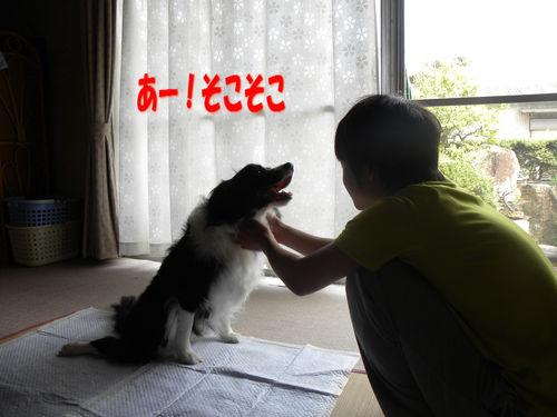 c0120585_19291397.jpg