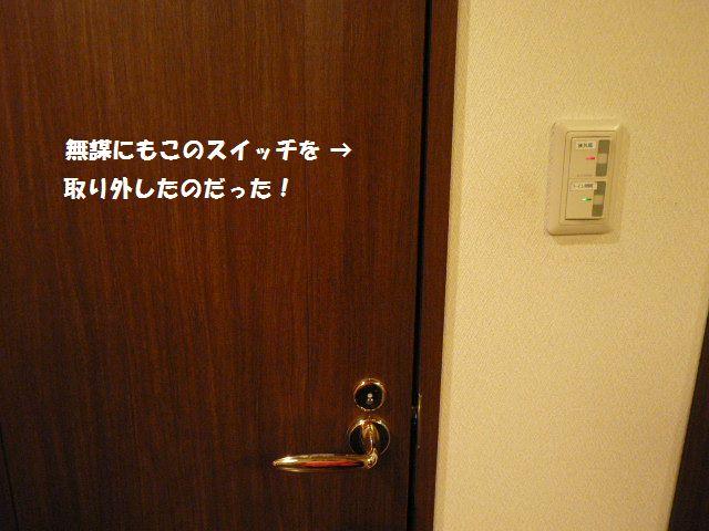 e0094407_220213.jpg