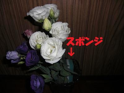 c0123748_21154961.jpg