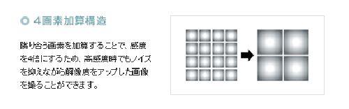 a0002177_145836.jpg