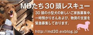 c0026843_2073889.jpg
