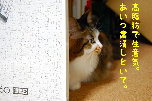 c0181639_1941462.jpg