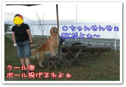 c0107886_0115576.jpg