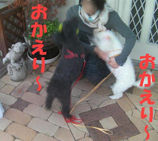 c0117239_1038207.jpg