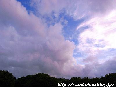 e0145805_20102039.jpg