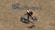 a0201367_3544615.jpg