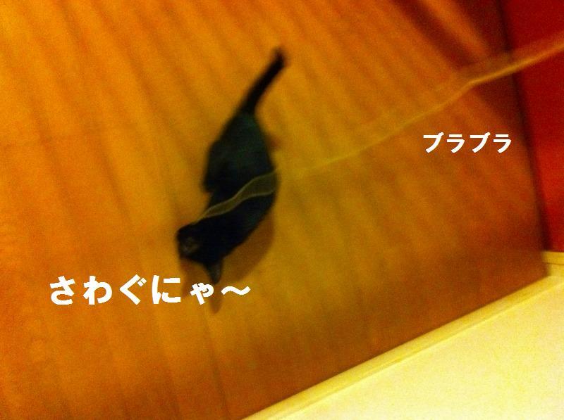 a0147921_22343433.jpg