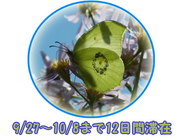 e0253104_21333778.jpg