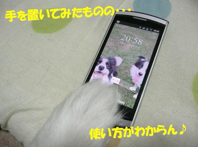 c0147241_1832393.jpg