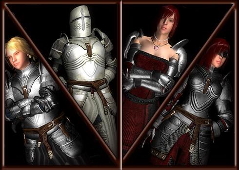 Oblivion Hgec Armor Replacer
