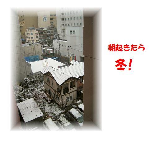c0221884_931852.jpg
