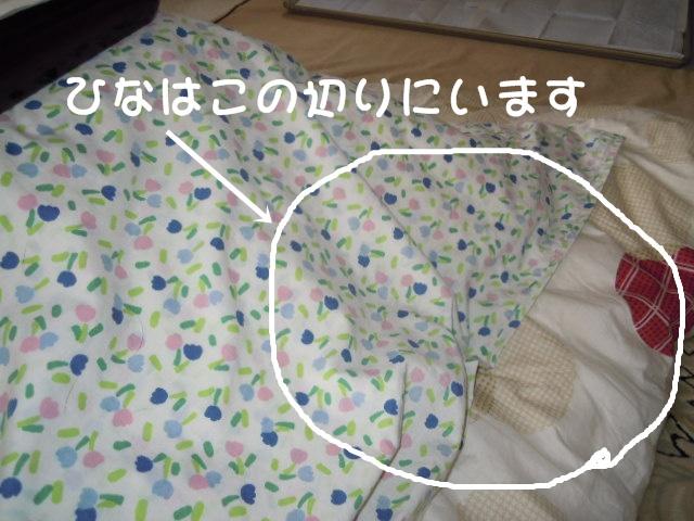 c0166622_12165751.jpg