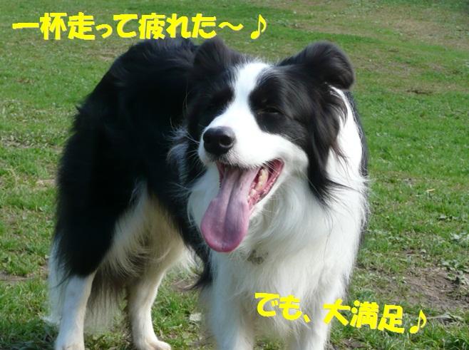c0147241_164850.jpg