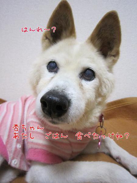 c0000189_14494684.jpg