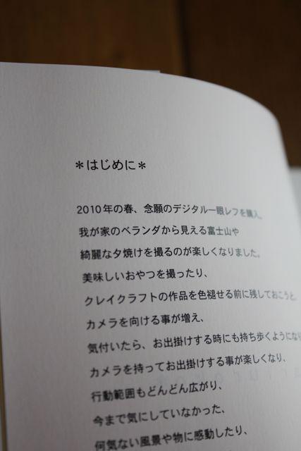 a0207911_17312016.jpg