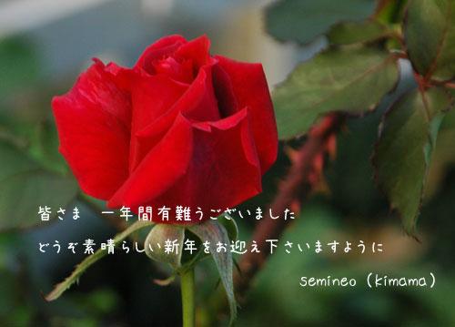 c0051105_2245310.jpg