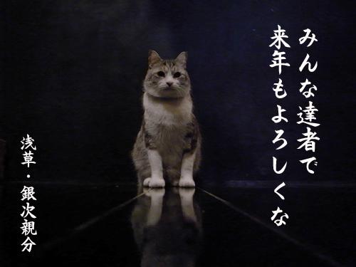 a0180681_17393059.jpg