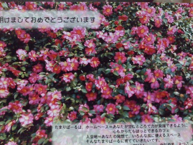 a0132059_2012213.jpg